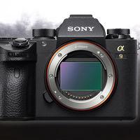 Sony anuncia una importante actualización de firmware para las A9, A7 R III y A7 III y la nueva app móvil Imaging Edge