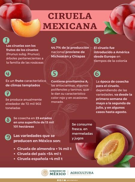 Ciruela roja: fruta de temporada con múltiples beneficios para la salud y una importante fuente de ingreso para el campo mexicano
