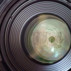 Foto 25 de 27 de la galería canon-rf-100-mm-f-2-8-l-macro-is-usm en Xataka Foto