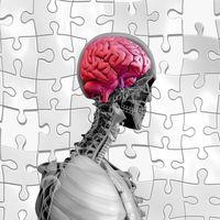 Inteligencia artificial para salvar el cerebro humano del alzhéimer: diagnóstico más temprano y exploración de nuevos tratamientos