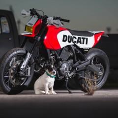 Foto 22 de 22 de la galería ducati-scrambler-russell-motorcycles en Motorpasion Moto