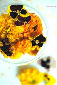 ¿Te animas a usar flores en tu cocina?