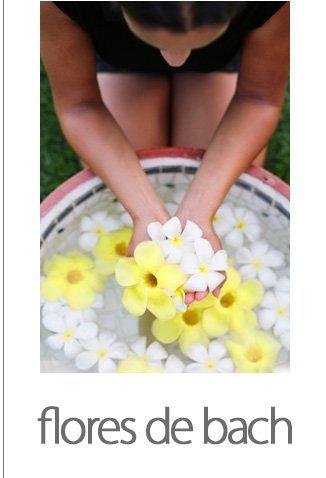 Flores de bach temuco