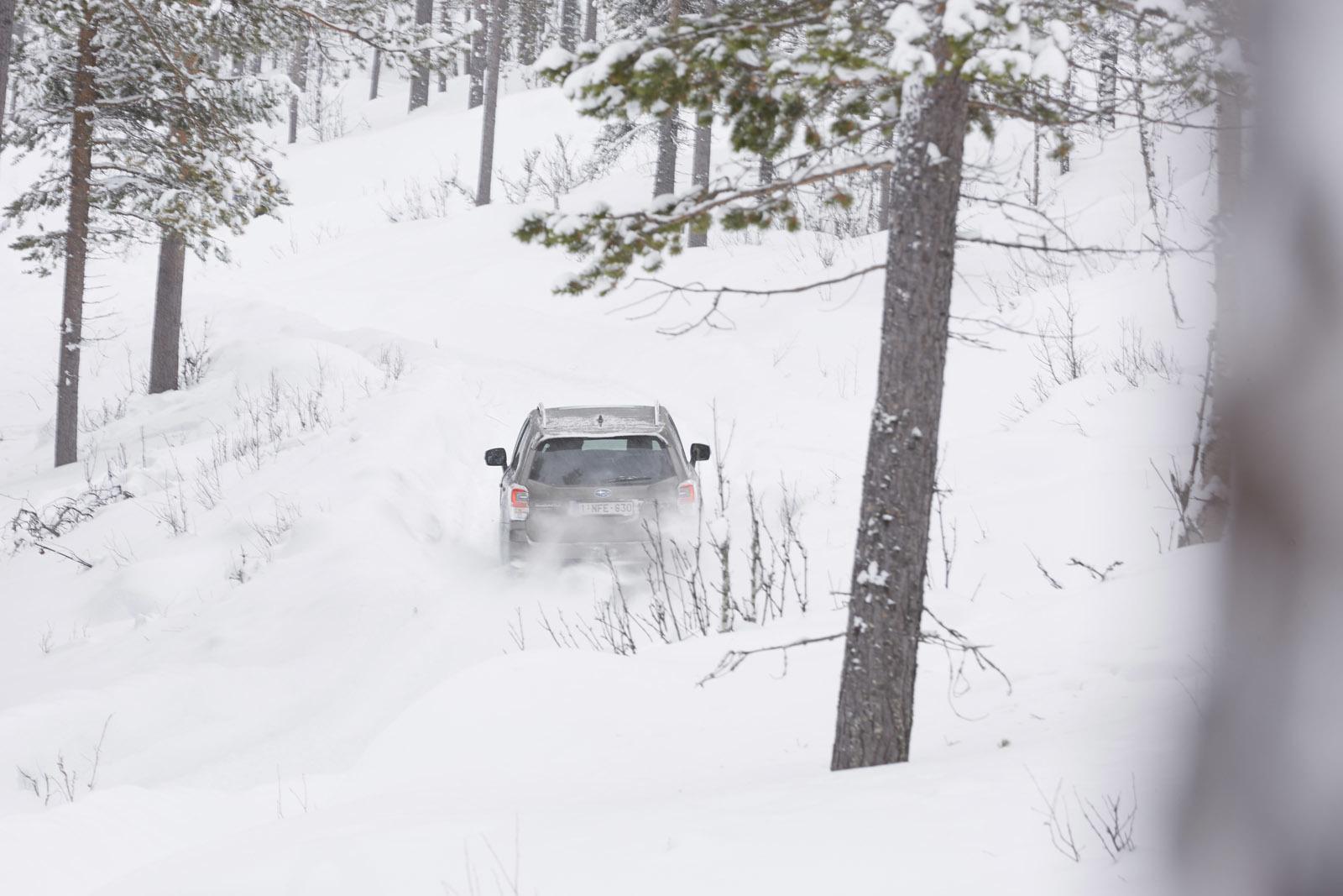 Foto de Subaru Snow Drive 2016 (8/137)