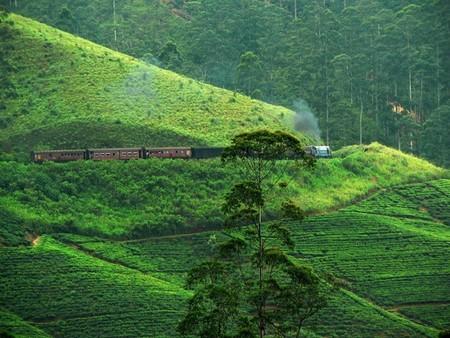 Qué ver en Sri Lanka. Vídeos inspiradores