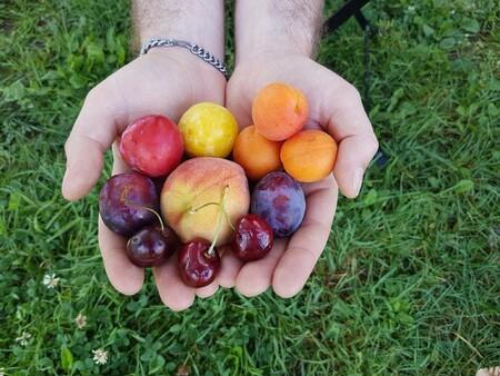 Paraguayo, ciruelas y otras 11 frutas del verano para disfrutar (y 47 recetas para incluirlas en tu dieta)