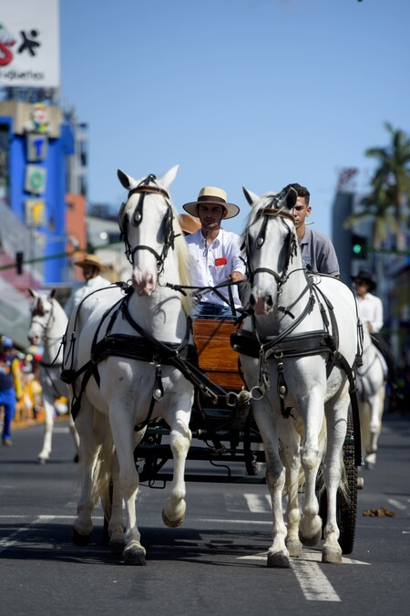 Costa Rica Tope San Jose Horse Parade People 003