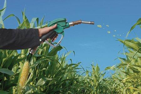 La producción de biodiesel en España se hunde