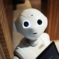 IBM lanza sus primeros programas en español con siete cursos online gratuitos sobre inteligencia artificial y ciencia de datos