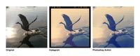 Instagram Hero o cómo pasar tus filtros a acciones