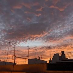 Foto 50 de 98 de la galería pixel-4-xl-galeria-de-imagenes en Xataka