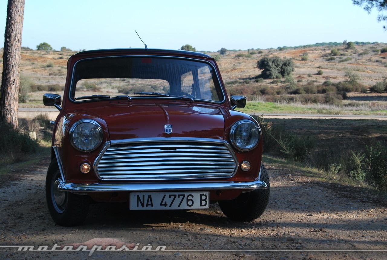 Foto de Authi Mini 850 L (prueba) (1/62)