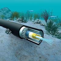 Google utiliza sus enormes cables submarinos para predecir terremotos a 2.000 kilómetros con 5 minutos de antelación