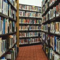 Biblioteca Digital Mundial: una gran y desconocida biblioteca con la historia de (casi) todo el mundo