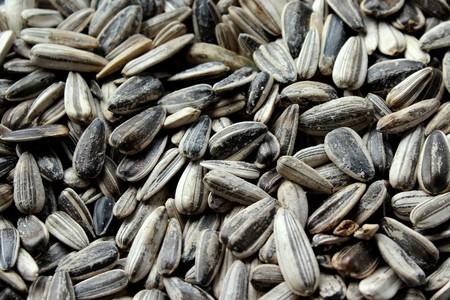 girasol-semillas