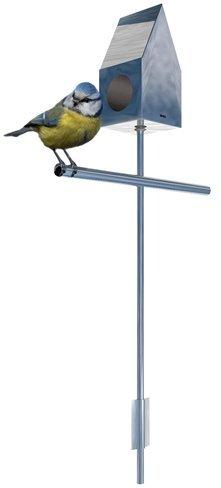 Bird House, calor y diseño para ese pajarito...