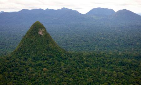 Perú crea uno de los mayores parques nacionales del mundo para proteger su selva de la deforestación