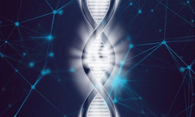 ¿Son realmente idénticos los genomas de gemelos idénticos?