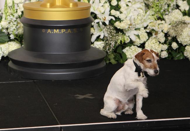 Uggie Oscar 2012