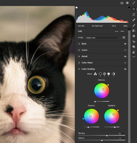 colorgrading con photoshop en camera raw