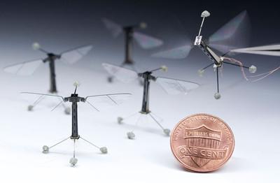 [Vídeo] El robot volador más pequeño despega
