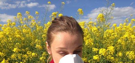 Google te ayudará a lidiar con la temporada de alergias, añade alertas de polen al buscador