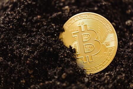 Alternativas Como Stellar O Cardano Superan A Bitcoin En Bastantes Aspectos Y Son Buenos Candidatos A Adelantarle En El Largo Plazo 5