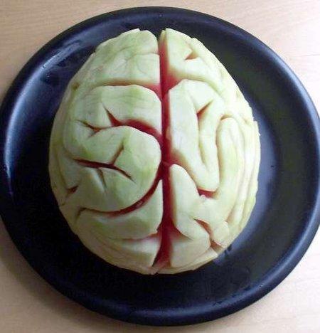 ¿El ser humano sólo utiliza el 10 % de su capacidad mental? (y III)