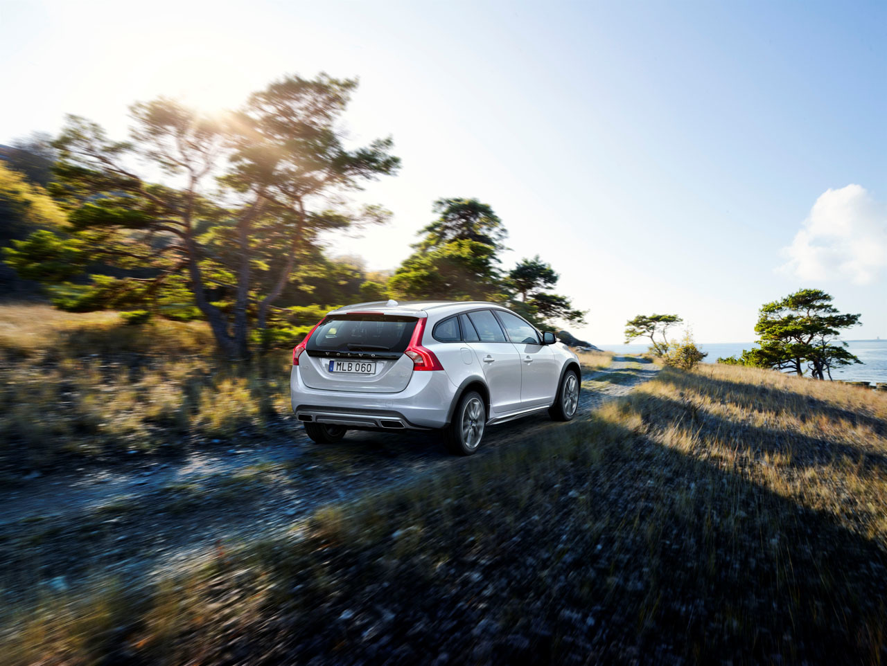 Foto de Volvo V60 Cross Country (9/9)
