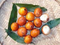 Achachairú: la fruta que sólo podrás comer en Bolivia
