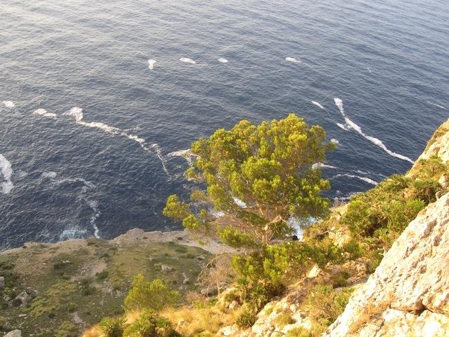 Foto de Mirador de Sa Creueta o Colomer, Mallorca (7/10)