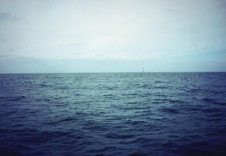 ¿El agua del mar puede quitar la sed?