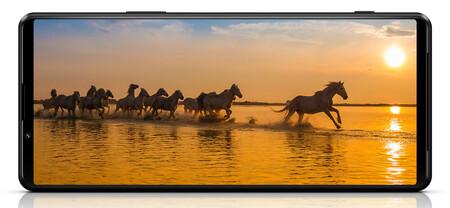 Sony Xperia 1 Iii 05