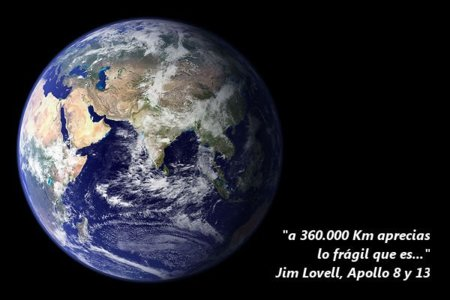 Ecowiki, contra las amenazas del medio ambiente