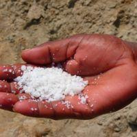 El secreto para conservar alimentos durante la historia: sal, acidez y bacterias del propio alimento