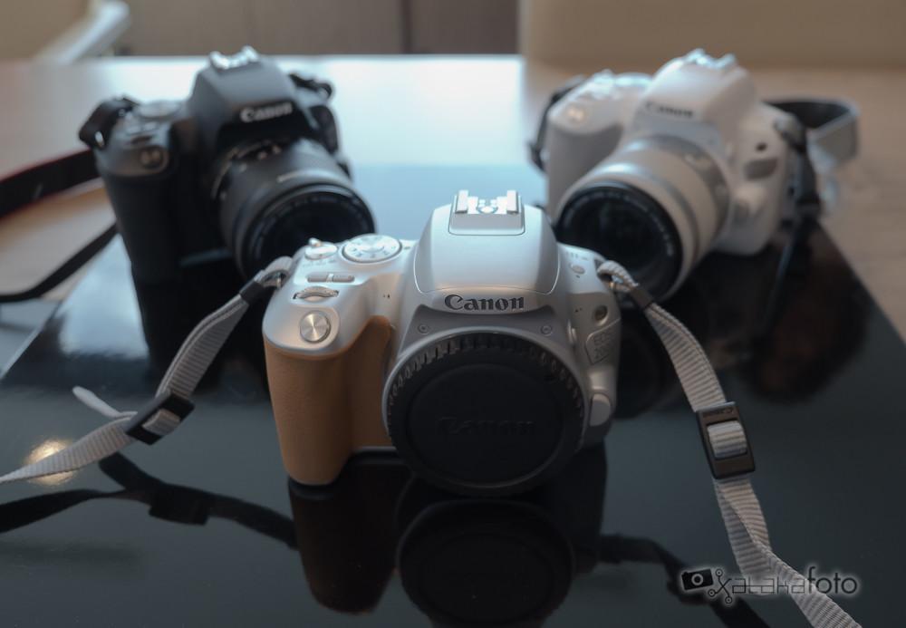 Canon Eos 200d 4