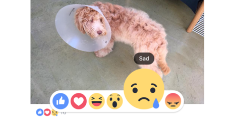 Facebook Reactions ya está disponible a nivel global