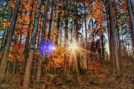 Incluir Sol En Fotos No Es Mala Idea 09