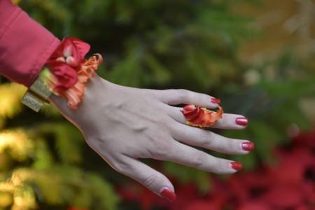 Joyas De Poinsettias