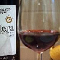Beber un par de vasitos de vino al día, contribuye a prevenir la trombosis arterial