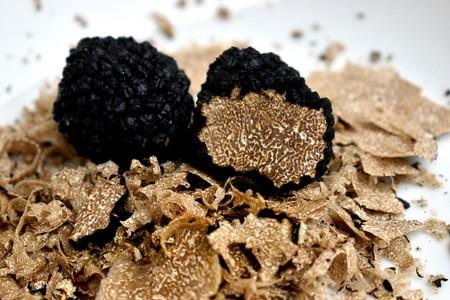 Tipos Hongos Champinones Poderosos Beneficios Curativos Fungi Trufa Negra