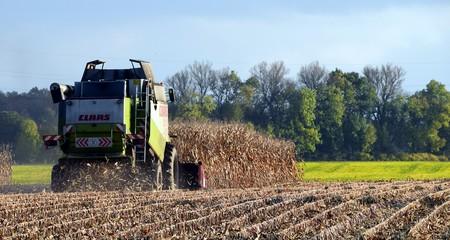 Harvest 1784238 1920