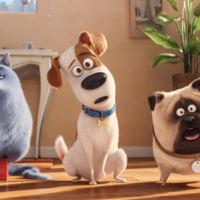 'Mascotas 2' ya está en marcha tras su éxito en Estados Unidos