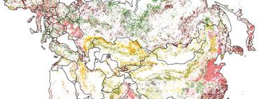 Menos bosques, más ciudades: así estamos transformando poco a poco la superficie del planeta