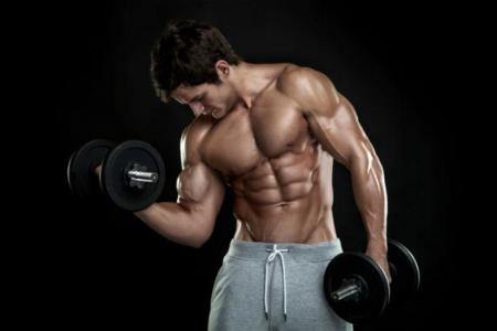 El entrenamiento adecuado depende del tamaño de los músculos