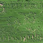 Cinco campos de maíz de lo más literario