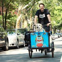 Tres ruedas, 48 km de autonomía y un perro: este triciclo eléctrico es ideal para mascotas, pero no es barato