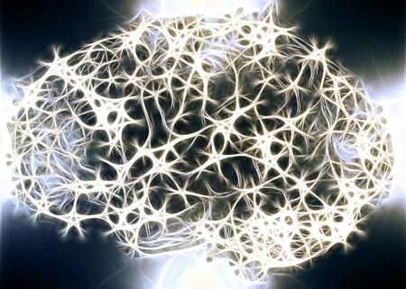 Éste es el primer mapa completo de los circuitos de un cerebro
