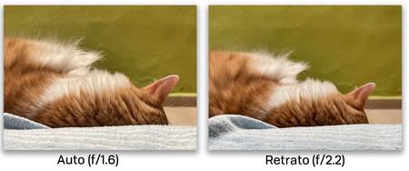 Iphone 12 Pro Max Comp Auto Retrato