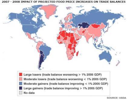 Naciones Unidas nos enseña el impacto alimenticio